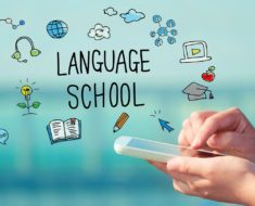 Do Professional Translation Services Suffice?